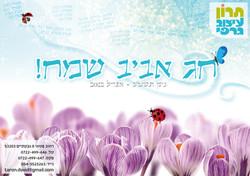 PassoverGreeting2012