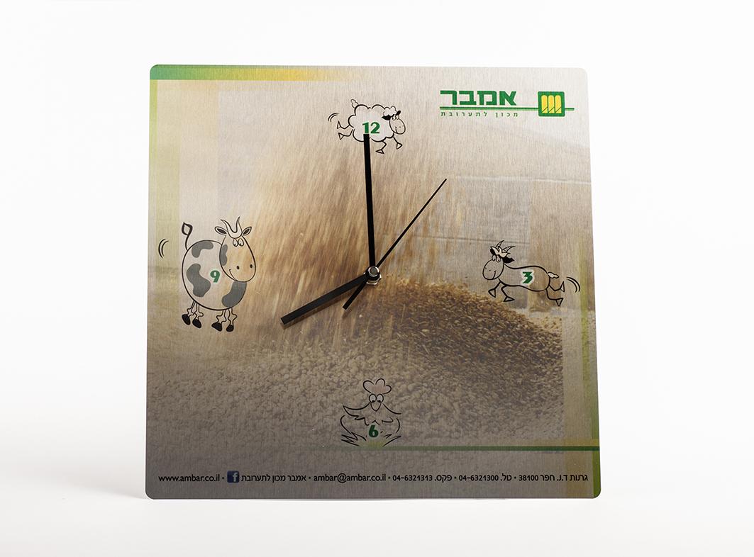 IMG_9381-Ambar Clock2-sml