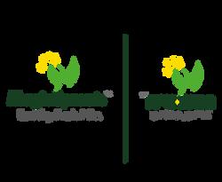 לוגו בשתי שפות