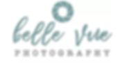 Belle Vue Photography Logo, designed by Infinite Marketing, Inc.