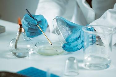 microbiology-laboratory-work-PV6C7Y9.jpg