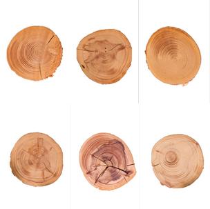 Round Wood Icons