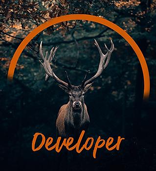 Developer.png
