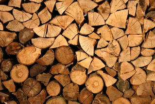 Firewood In The United Kingdom