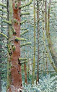Coast Wood.jpg
