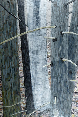 Edge of the Woods Gang.JPG, trees, forest, woods, landscape, blue green gray silver, encaustic