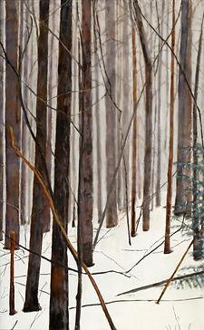 Foggy Wood Near Glad Run.jpg