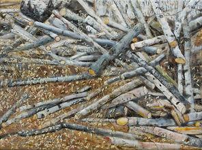 Flanders Stick Pile.jpg