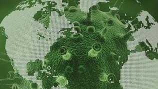 Pandemia: una violazione dei diritti umani