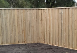 Timber Slat Fence Capped top