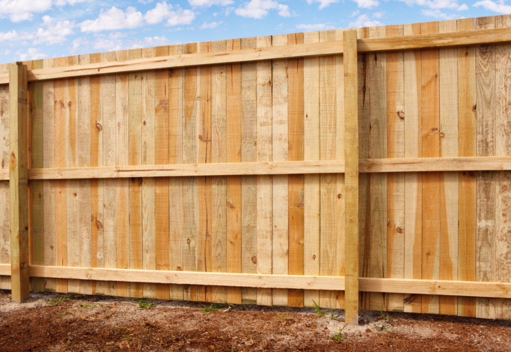 Treated Pine Timber Pailing Fence