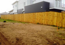 Timber Pailing Fence with Capping