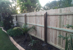 Timber Pailing Fence