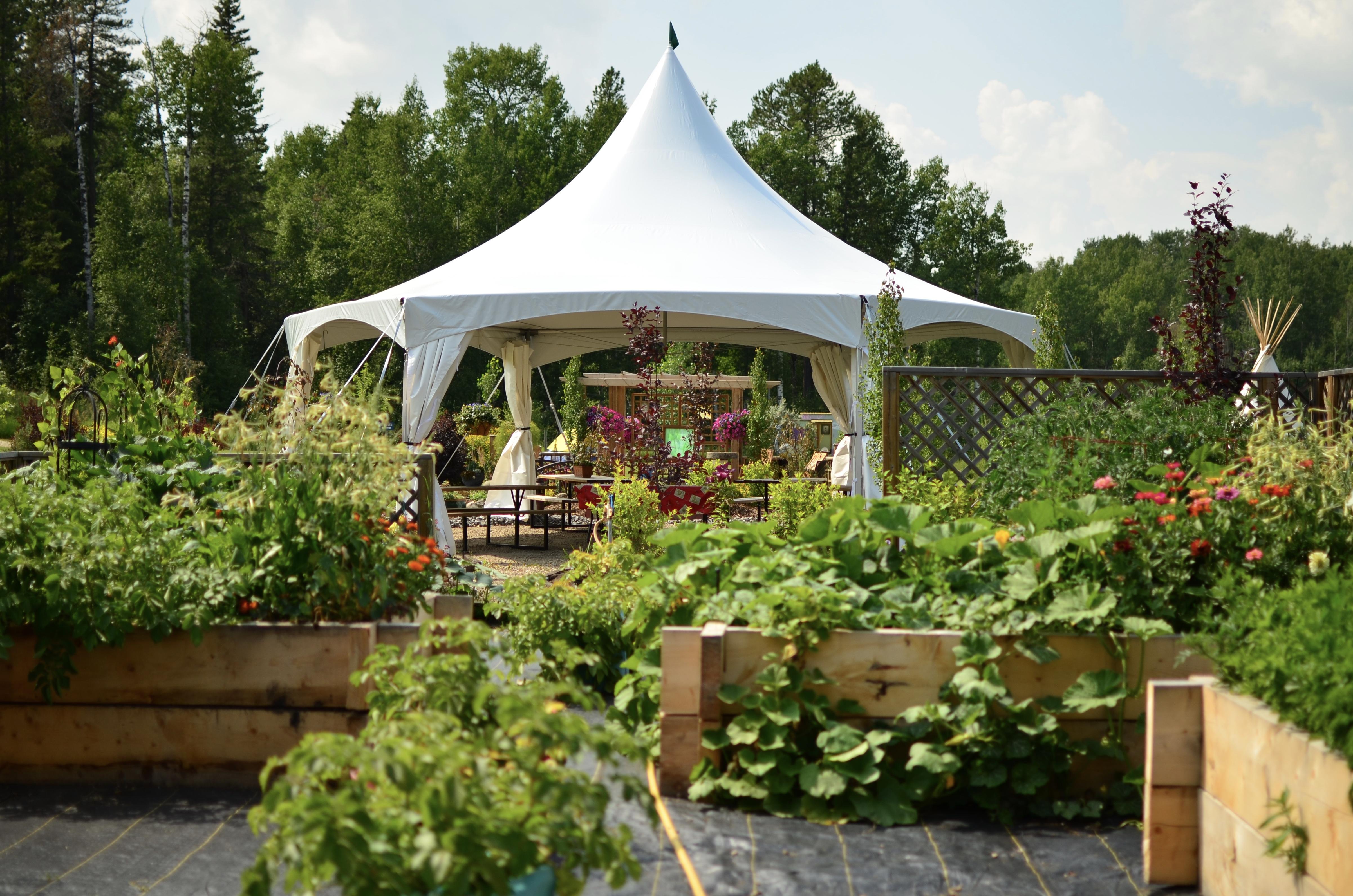 Dinning Tent & Garden boxes.jpeg