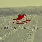 Bob fencing.jpg