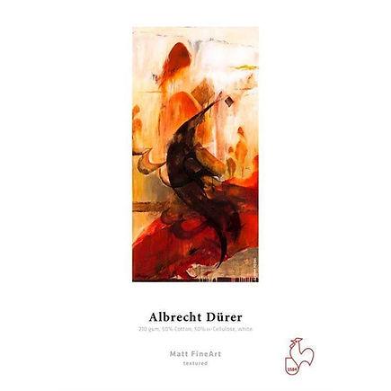 AlbrechtDuerer.jpg