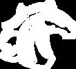 DC Thunder Horse Logo_white_transparent.