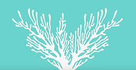 CORAL's logo, a line drawing of brancing coral