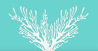 A line drawing of coral reef is shown. The coral is growing outward and is part of the group's logo.