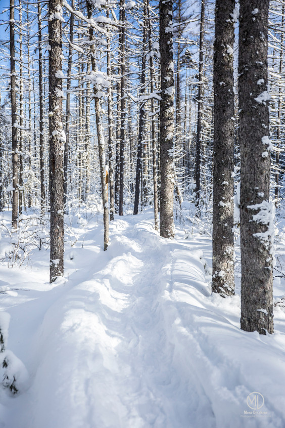 Photo trail hiver quebec Deschene