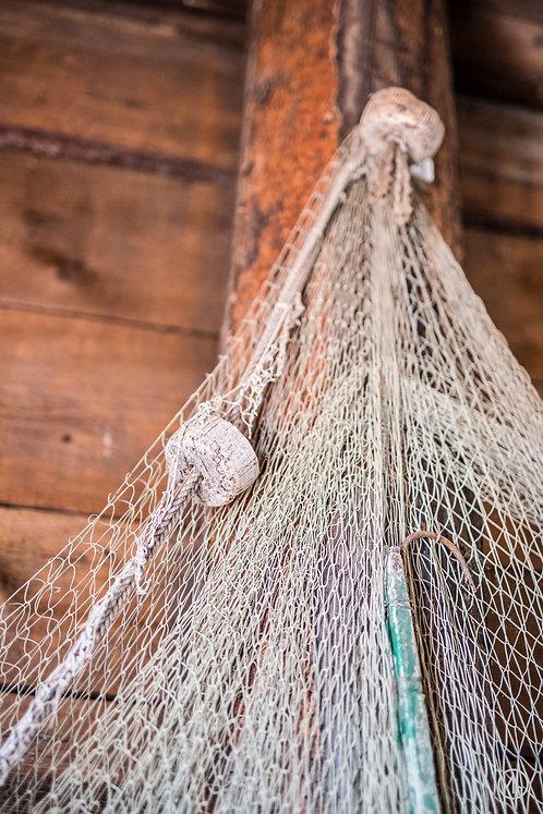 5 photos - pêche