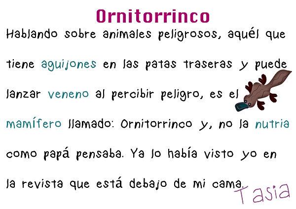 ornitorrinco.jpg