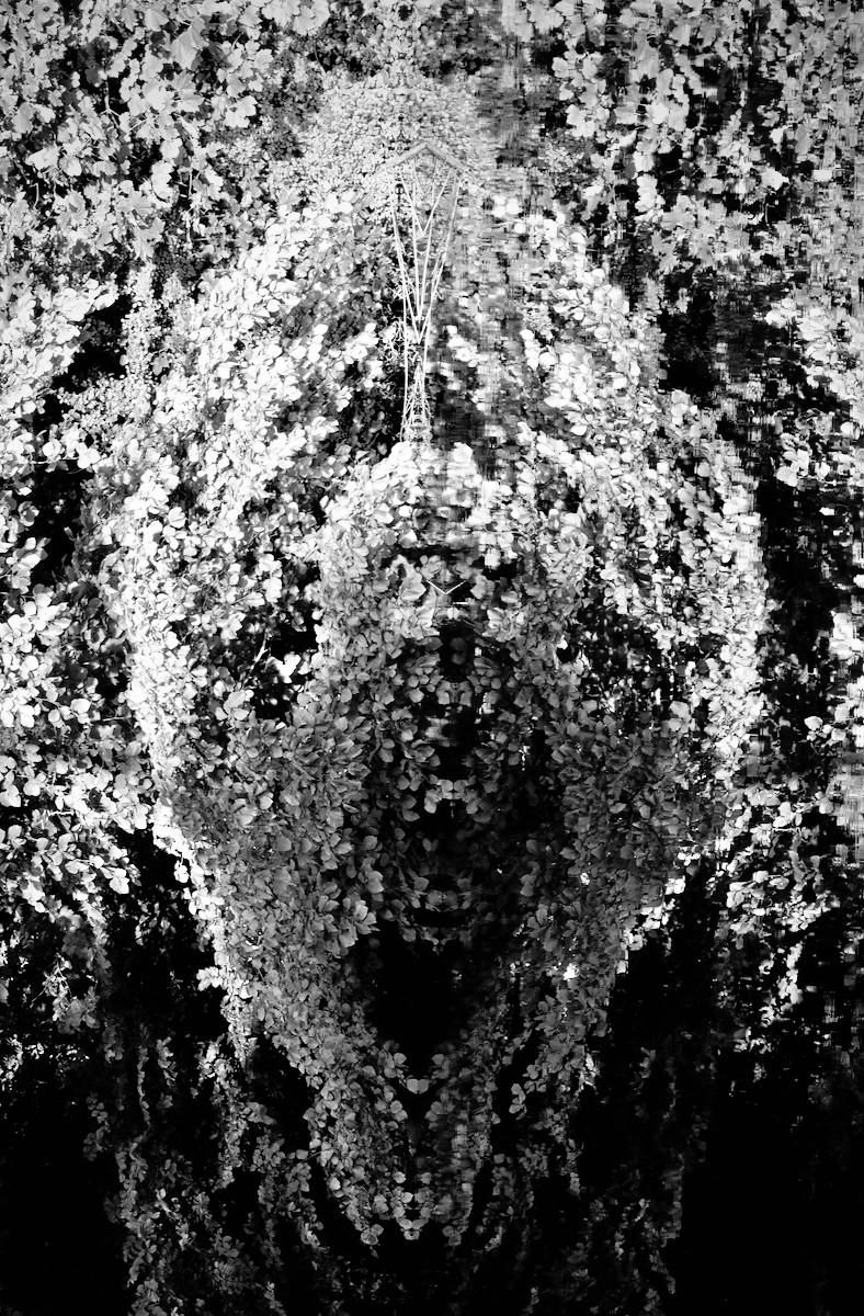 'RiverHead' by Geoff Sloan (9 marks)