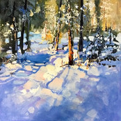 SOLD-Winters Shadows