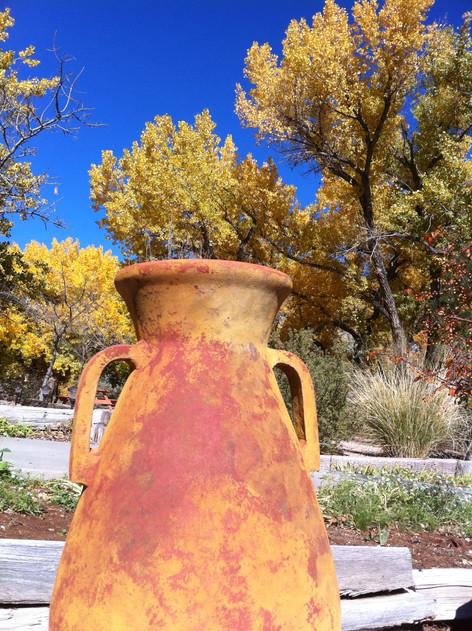 New Mexico Pot