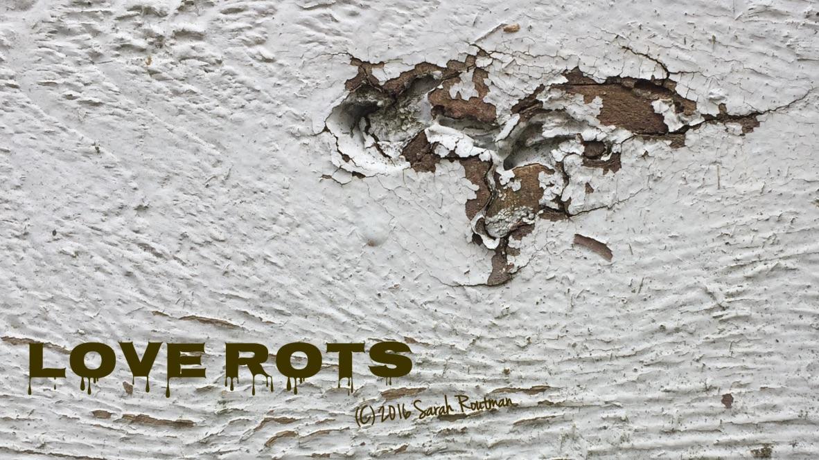 Love Rots