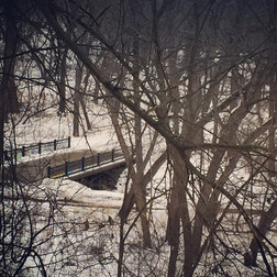 A Winter Day in Minneapolis