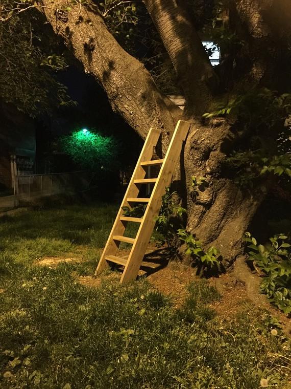 Magic ladder