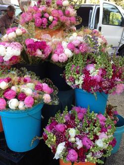 Cut flowers in Richmond Virginia