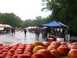 Rain or shine farmers market.jpg