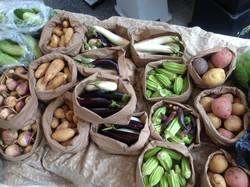 July organic produce Virginia