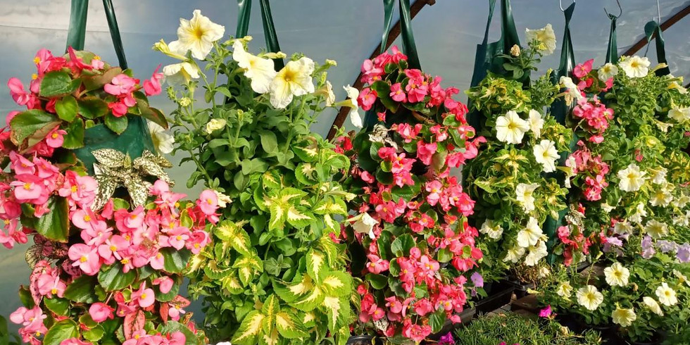 DIY Planter Workshop, Cider Sipping, Farm-Sourced Chef's Specials