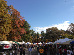 South of the James Market Fall
