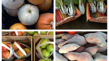 RVA's 6 Winter Farmers Markets