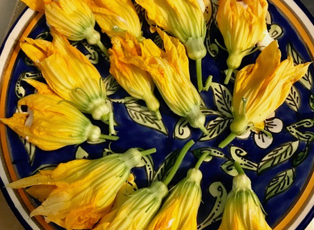 Stuffed Squash Blossoms