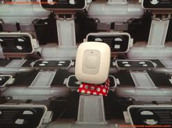 www.nintendo-collection.com - Nintendo DS Activity Meter Marche avec Moi gris blanc