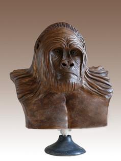 N°17 Gorille