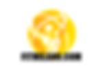 Scheda palestra online low cost - Seria - Professionale - Rapida