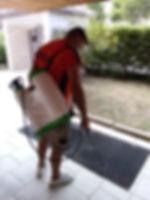 Impresa di pulizie industriali e civili Foggia - Lucidatura pavimenti