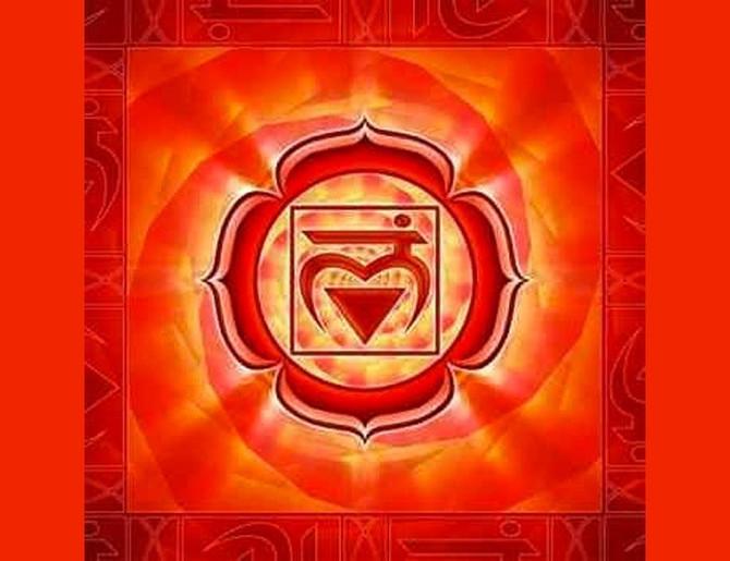 Primer Chakra: Muladhara (base o raíz)