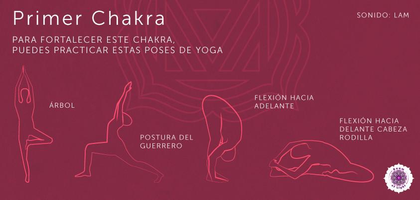 muladhara yoga