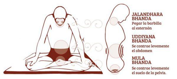 Los Bandhas en Yoga