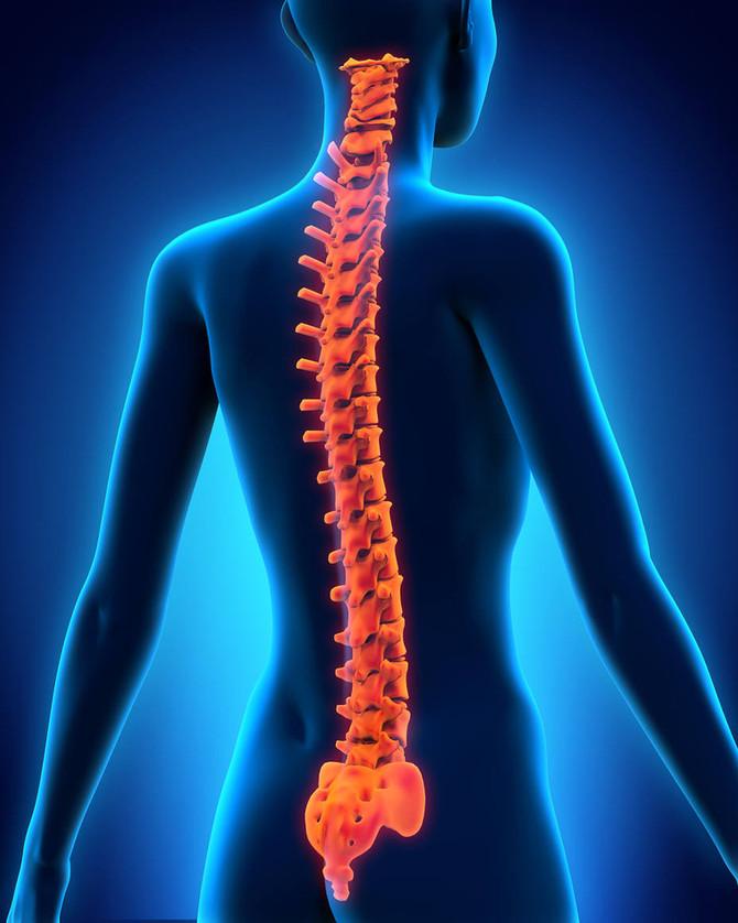 Beneficios del Yoga para la columna vertebral