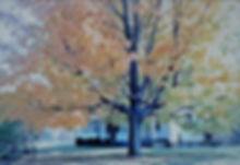 Ringewold -Hoffman home - Copy + + (2).jpg