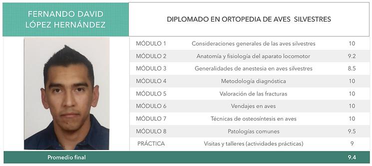 ORTOPEDIA-LOPEZ-HERNANDEZ.png