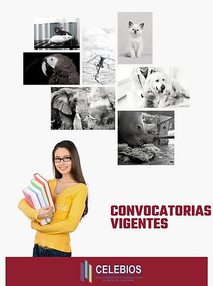 CONVOCATORIAS VIGENTES poster.png